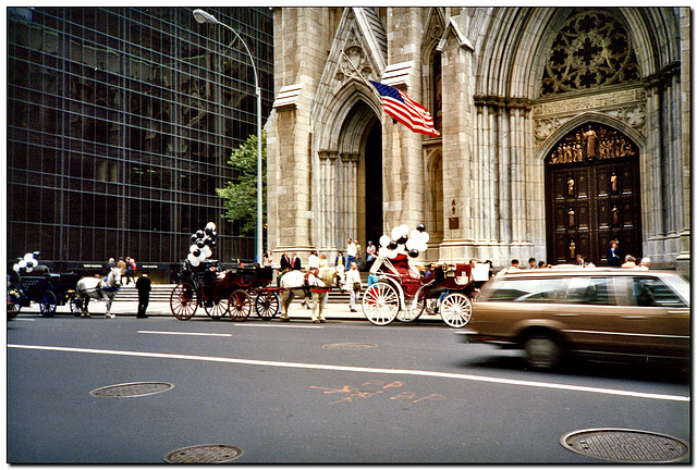 New York | St. Patrik's Cathedral