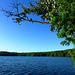 DE - Erftstadt - Liblarer See
