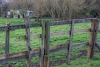 Stables & Fencing   /   Jan 2020
