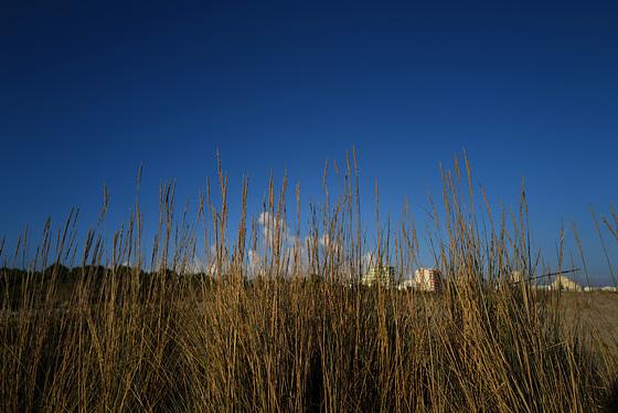 Monte gordo behind the dunes