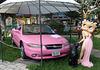 0 (1311)...pink car