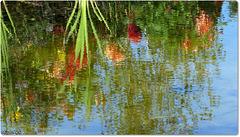 Water Reflexion