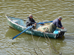 Two men in a boat setting nets in the Guadiana River, Mertola.