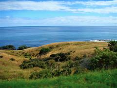 East Cape Coastline.