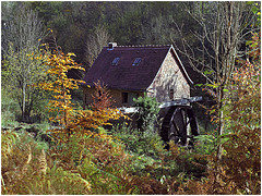Colors of autumn: The hidden mill