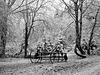 Le passé sommeille dans les bois  (rateau-faneur) [ON EXPLORE]