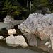 Tonquin Beach L1020138