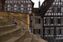 Schwäbisch Hall, Große Treppe