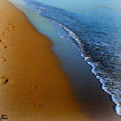Lumière bleue du bord de mer