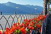 H.F.F. - in Limone (Lake Garda, IT)