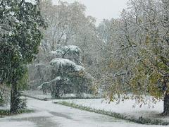 Aujourd'hui en Drôme, depuis ma fenêtre...