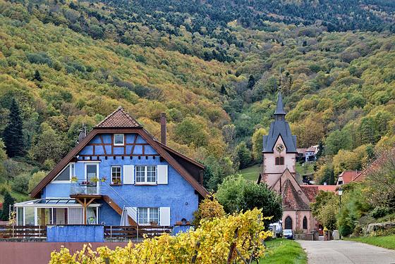 Gray Fall, Reichsfeld, Alsace, France - 2017-10-24 1250132