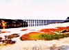 The Pudding Creek Trestle bridge in Fort Bragg California  - (PiP)