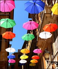 Genova : allegria nelle vie della città ! - (938)