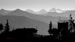 Blick zu den Zillertaler Alpen Gletscher