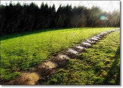 Le chemin de pluie [ON EXPLORE]