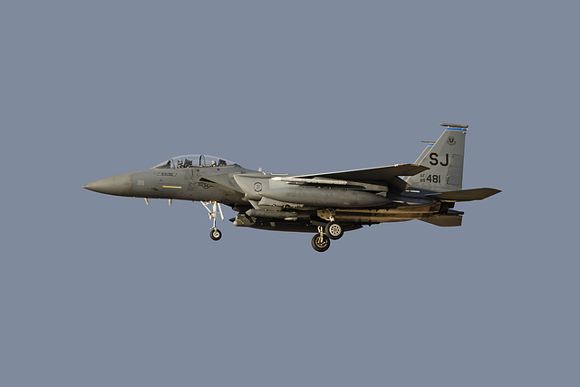 4th Fighter Wing McDonnell Douglas F-15E Strike Eagle 89-0481