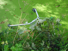 Trolley, Monmouthshire-Brecon Canal, Maendy Way, Cwmbran 31 August 2017