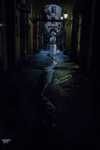 La luz y cuando llueve.II