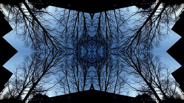blue | network