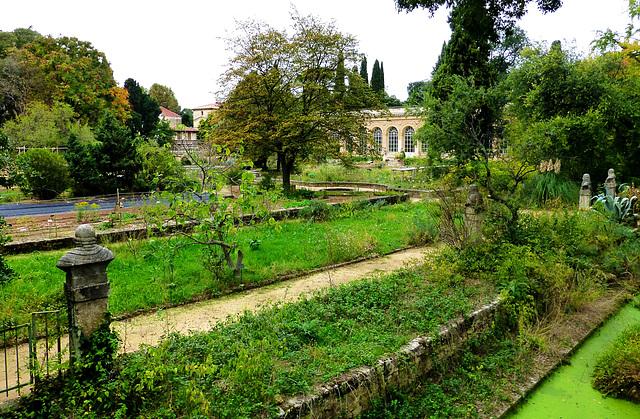 FR - Montpellier - Jardin des plantes