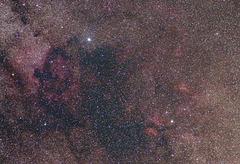 Cygnus area II (view on black)