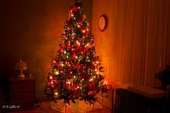 Sens chrétien de l'arbre de Noël