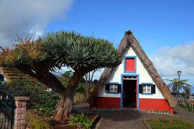 Wahrzeichen der Insel Madeira