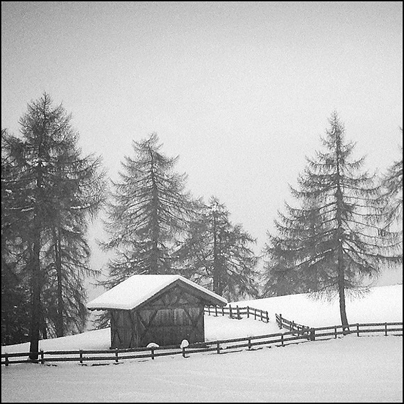White Winter World.