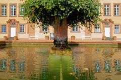 Der Brunnen im Schloßhof