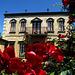Tuscan Deepdene