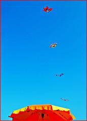 Drachenflieger