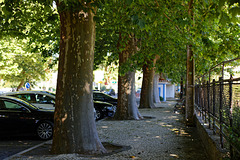 Várzea de Colares, Portugal
