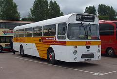 DSCF4785 Midland Fox GJW 43N - 'Buses Festival' 21 Aug 2016