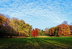 Autumn view at Nachtegalenpark