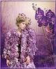 Couleur lilas