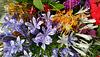 361/365 Mum's flowers