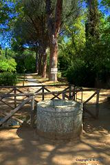 Pozzo Etrusco con puteale in pietra, antecedente al II sec. a.C.