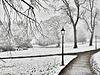 Museum Gardens, York  - In Winter