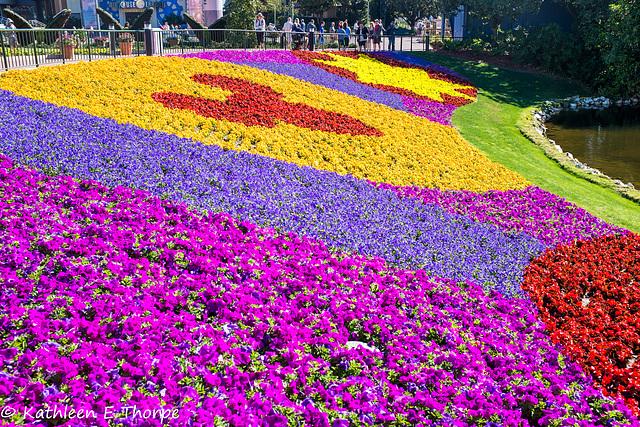 Epcot Flower Festival 030616-001