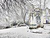 St. Mary's Abbey ruin in winter