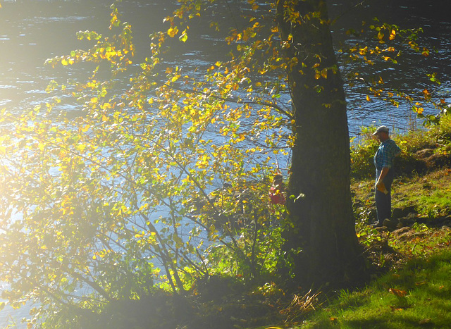 Herbst im Elbtal - aŭtuno en la Elbvalo