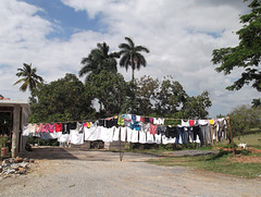 Laissons sécher le tout / El día de lavandería