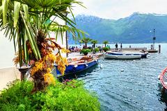 Palmenblüten im alten Hafen.  ©UdoSm