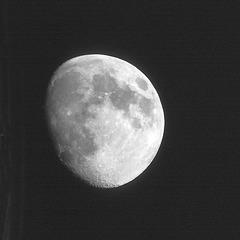 retour sur la Lune / Back to the Moon