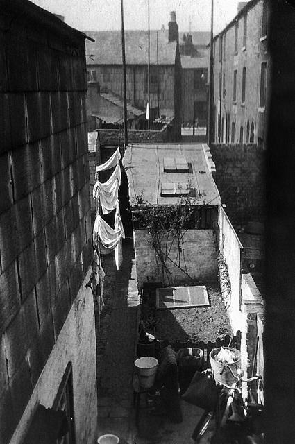 A typical Portsmouth backyard
