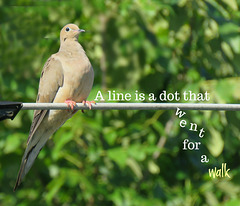 A line is ..