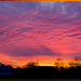 Вогняна симфонія світанку | |Fiery Symphony of the Rising Sun