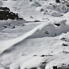 IMG 7619 snow