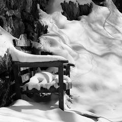 IMG 7765 snow